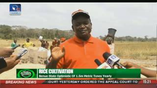 News Across Nigeria: Benue, Cross River Boost Rice Production