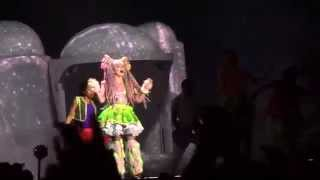Lady Gaga : Naked on Stage! / Bad Romance Live @RBC Royal Bank Bluesfest 2014