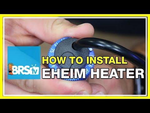 How To Calibrate Your Eheim Jager Heater | BRStv How-To