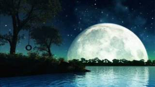 dean martin in the misty moonlight (lyrics)