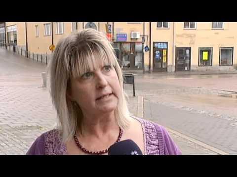 Borlänge - Här är var sjätte sverigedemokrat
