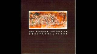 12 - Double Revolution (Side D of 1996: The Iceburn Collective - Meditavolutions)