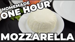 ONE HOUR MOZZARELLA | The Starving Chef