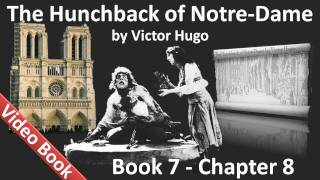 Book 07 - Chapter 8 - The Hunchback of Notre Dame by Victor Hugo - The Utility of Windows