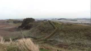 Hadrians Wall With  Alfie The Weimaraner. Play In Hd.