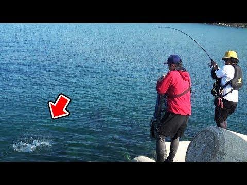【釣りYoutuberの2泊3日間#8】堤防からランカー釣れた‼