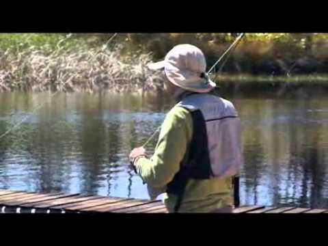 Clip From The DVD, The Ultimate Guide To Fly Fishing With Sean Mills