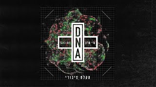 DNA homebase - מקלט ציבורי