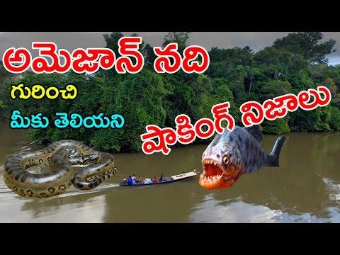 అమెజాన్ నది గురించి తెలిస్తే షాక్ అవ్వాల్సిందే | Shocking And Unknown Facts About Amazon River | CC