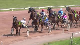 Vidéo de la course PMU PRIX DE L'ARBOGNE