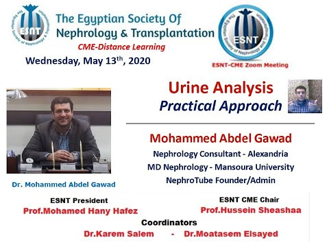 Urine Analysis  A Practical Approach (Arabic And English)  Dr  Mohammed Abdel Gawad, 13 May 2020