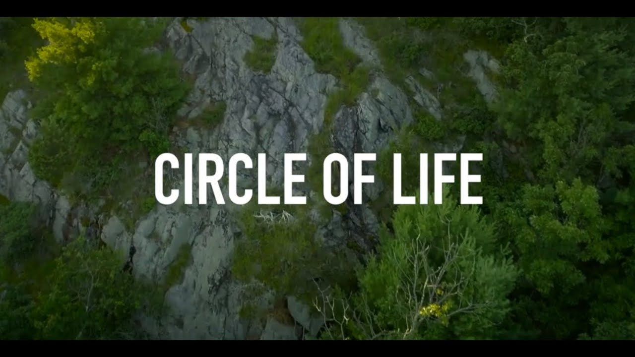 Pop-Up Radio: Circle of Life