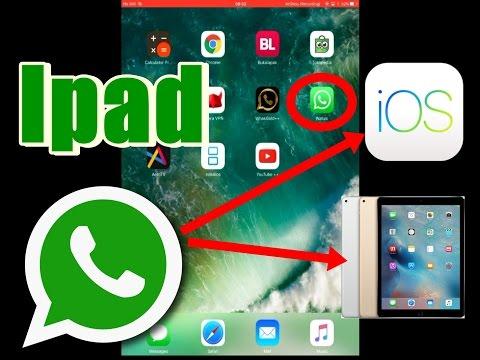 Whatsapp apk latest version for ipad