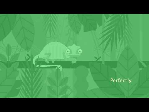 Safari Recruitment Animation