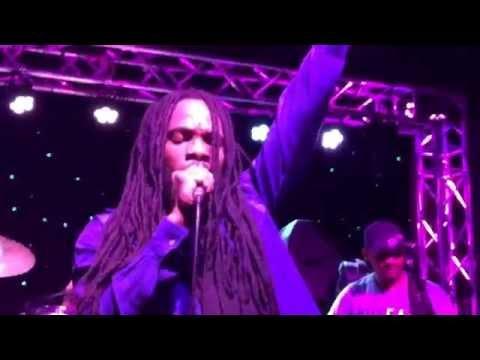 Bushman in Chicago with Indika reggae band.. Wild hare.