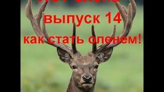WoT олень,выпуск 14,как стать оленем!