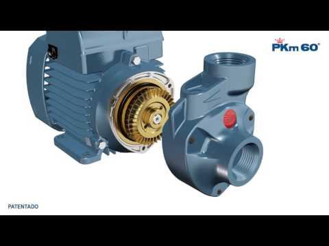 Bomba centrifuga Pedrollo PKm60 ESPAÑOL thumbnail