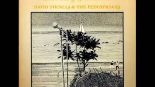 David Thomas and the Pedestrians - The crickets in the flats
