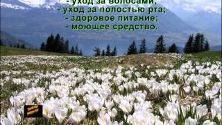 Вивасан Воронеж