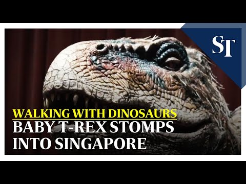Baby T-rex stomps into Singapore | The Straits Times