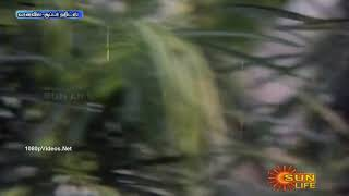 Aasai Vachcheyn Un Mela-Natpu Tamil Movie 1080hd Video Song