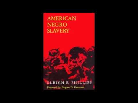 American Negro Slavery: The Myth Of Mass Slave Rape