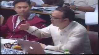 #Balikbayan Boxes Committee on Ways and Means Allan Peter #Cayetano Part 2
