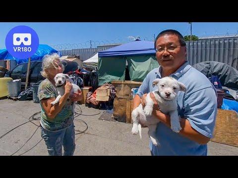 Oakland Tent City Homeless Encampment in VR180