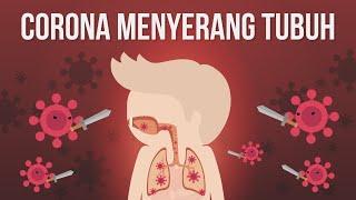 Bagaimana Virus Corona Menyerang Organ Tubuh Kita?