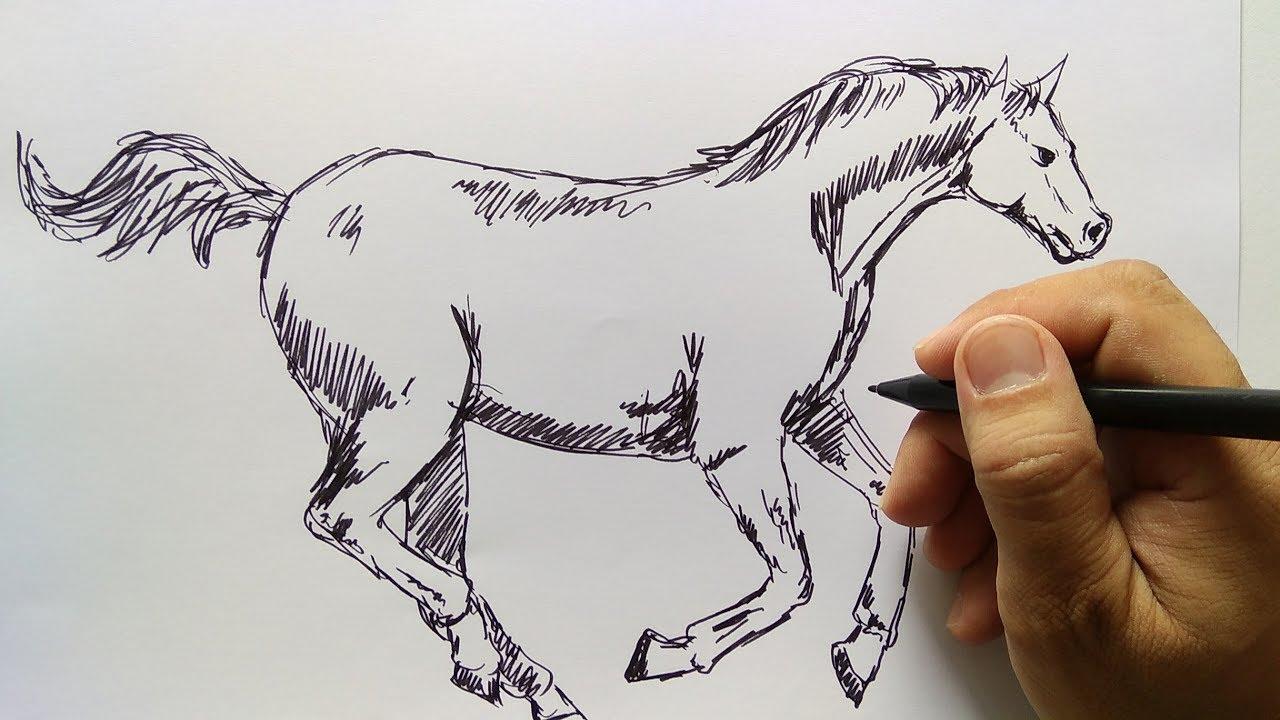 Cara Menggambar Kuda