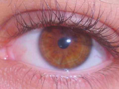 como hacer que tus ojos se vuelvan color miel youtube