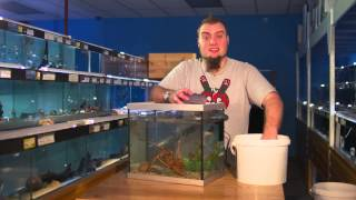 Fishkeeping Tips- How To Perform A Water Change On An Aquarium