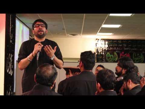 Ab Mujhe Koi Sakina nahee kehta baba | Janab Mir Hasan Mir at Masom Chicago 11/06/2016