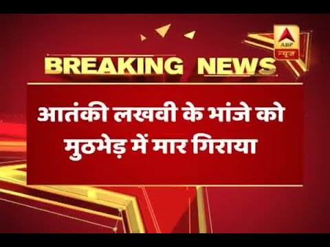 J&K: Security forces gun down 5 terrorists during encounter in Bandipora