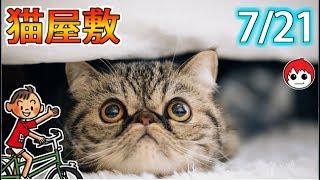 猫屋敷イベントってどうなったんだ?【ぼくなつ2リメイク版】21