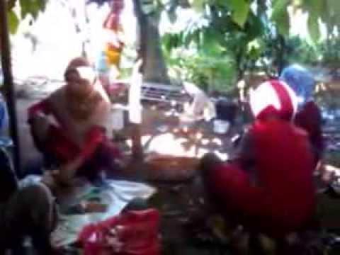 Lagu Lampung Lapah Semanda by Zaironi Layang Sengaji