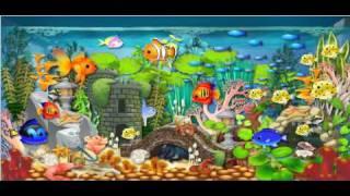 GS Aquarium2