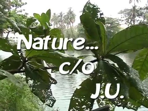 Nature@Jadavpur University
