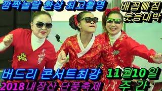 💗버드리 깜짝놀랄 배꼽빠짐웃음대박최고 💗11월10일 주간 2018 내장산 단풍축제 초청 공연