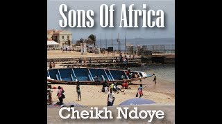 New York Bass Works Artist  Cheikh Ndoye Sons of Africa