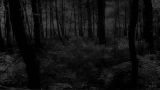 Grimlair - Le Froid Sommeil