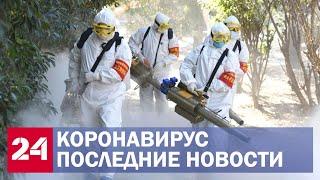 Коронавирус. Последние новости 3 апреля. Новое число зараженных в России и продление самоизоляции