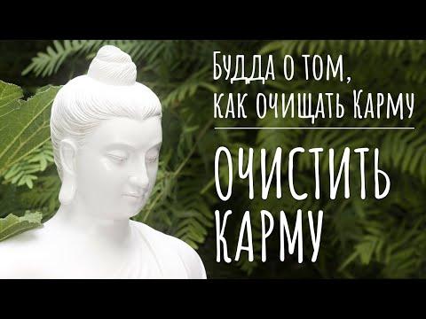Как очистить Карму согласно буддизму. Будда о том, как почистить Карму. Очищение Кармы в буддизме.