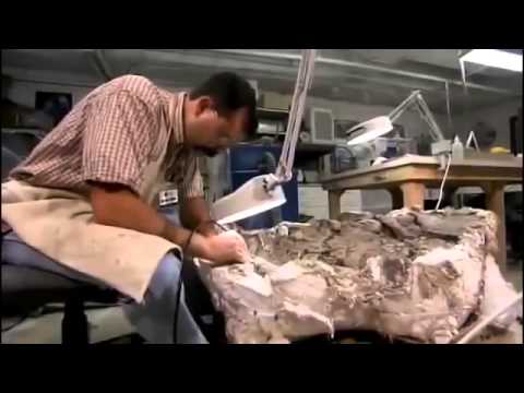 ◕ Finding Dinosaurs - Discovery Documentary Films - Full HD History 2014 ✪