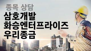 삼호개발, 화승엔터프라이즈, 우리종금 종목 상담