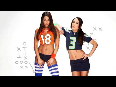 WWE The Bella Twins - You Can Look But You Can't Touch (Instrumental Cover)