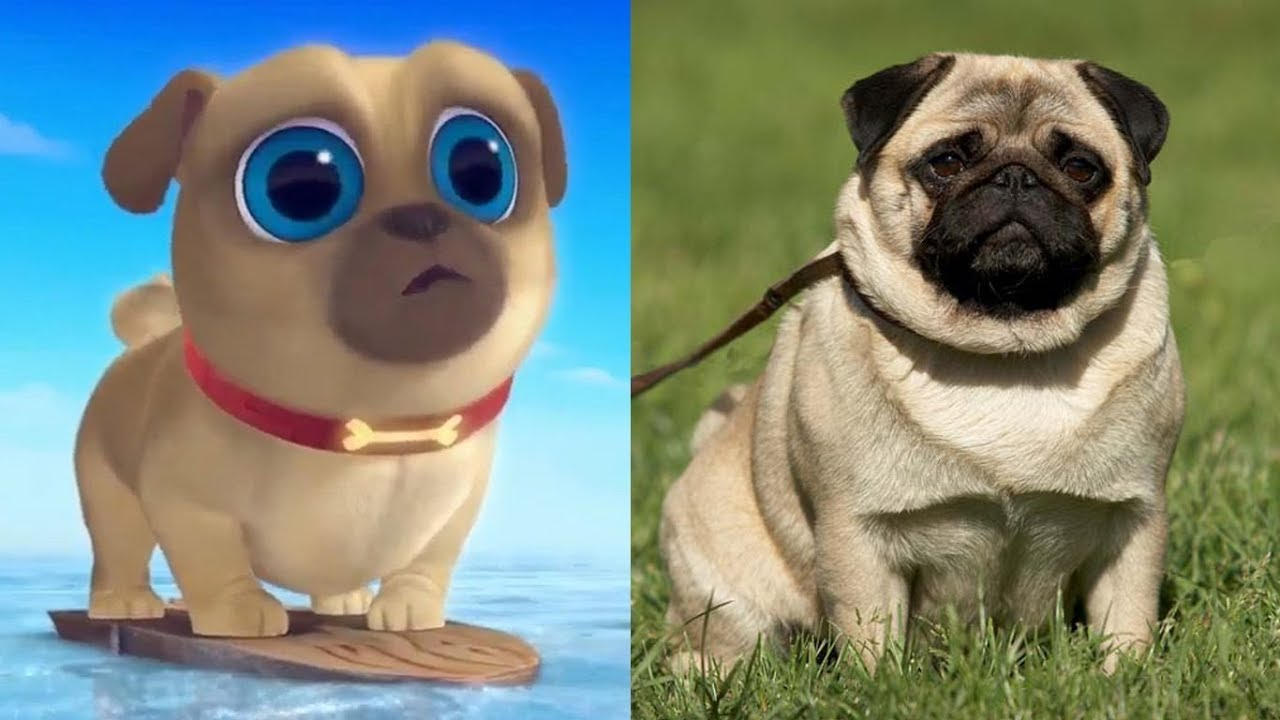 Puppy Dog Pals Characters In Real Life 2019 Youtube