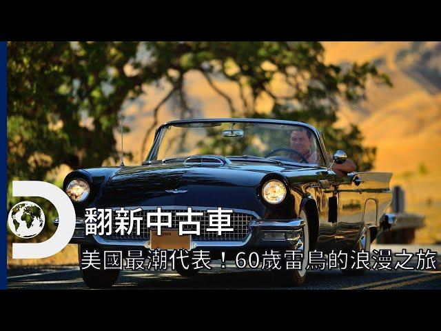 美國最潮汽車代表!60歲的福特老雷鳥的浪漫之旅,化身真正的禮車~每周二晚上《翻新中古車》Wheeler Dealer