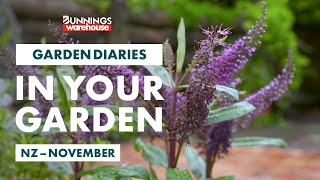 Gardening in November | New Zealand | Bunnings Garden Diary