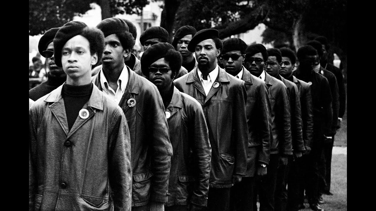 Brief History of the Black Panther Party